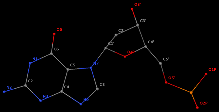 N7-glycosylated guanine
