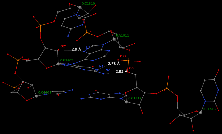 U-turn formed by the GCA-triloop (1jj2)