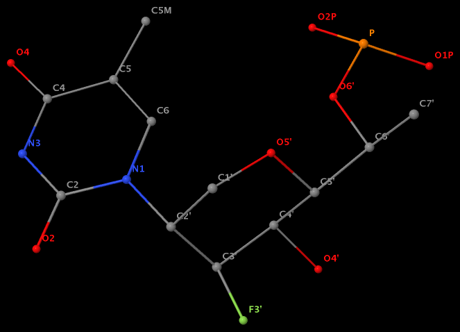 N1(U) connects to C2′